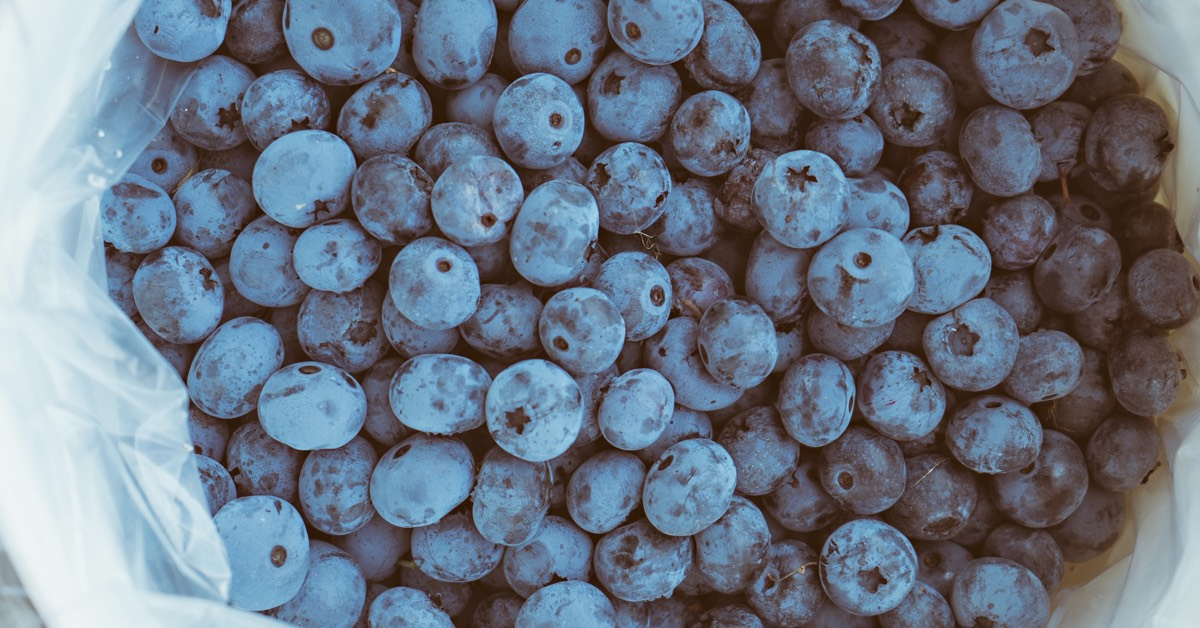 whole foods for health berries